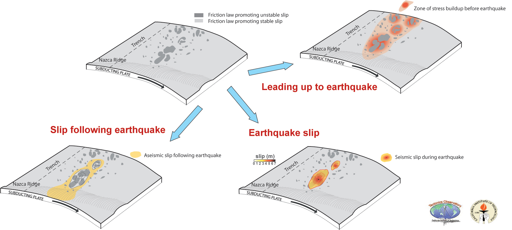 Old Fashioned The Anatomy Of An Earthquake Crest - Human Anatomy ...